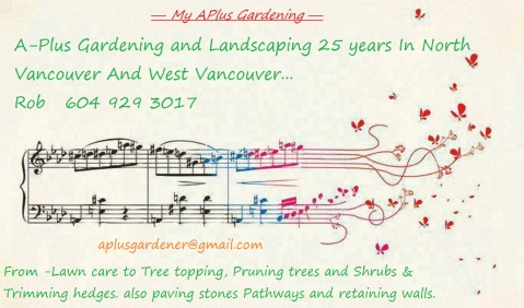 My APlus Gardening music notes